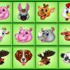 Aranyos állatok